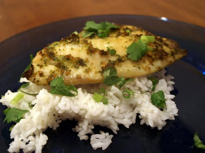 Torrey's Kitchen: Ginger and Cilantro baked Tilapia
