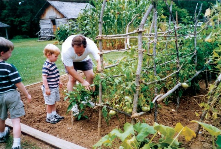 Young sprouts great gardening projects for kids - Summer projects house garden ...