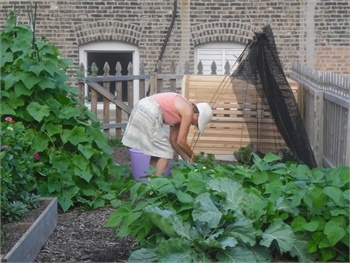 Volunteers get involved by #lending a gardener's hand. www.placemakingchicago.com/places/three-brothers-garden.asp