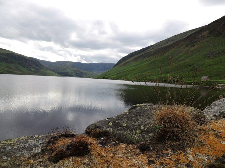 Loch Lee, Glenesk. | Beautiful Scotland | Pinterest: pinterest.com/pin/399835273138201801