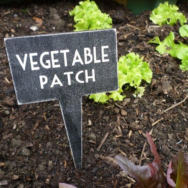 Vegetable patch sign secret garden pinterest for Vegetable patch