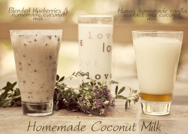 Homemade Coconut Milk - shameless self promotion, because I am in love ...