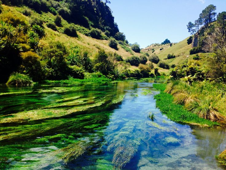 Best Hot Spring In New Zealand South Island