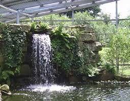 Indoor Ponds and Waterfalls  Patio  Pinterest
