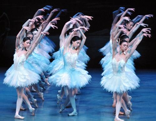 State Ballet of Georgia - Swan Lake (by Chi-Chuan Chen)