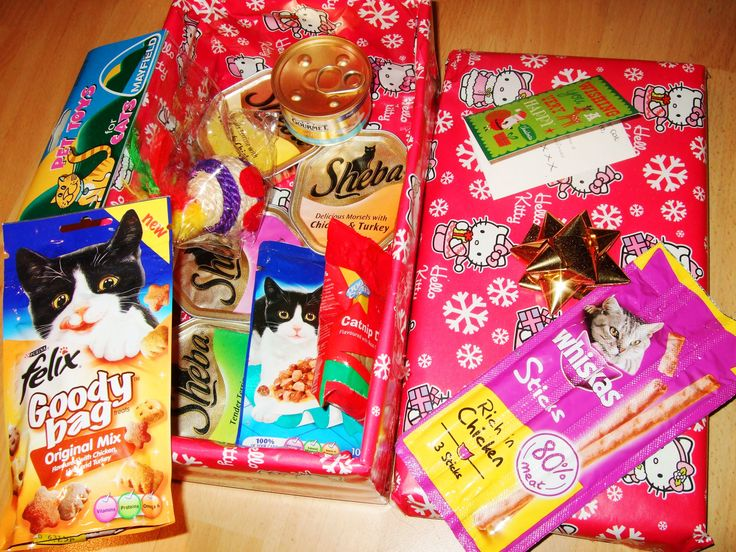 Kitty Christmas Gift Box made up and donated to 'Chester Cat Care ...