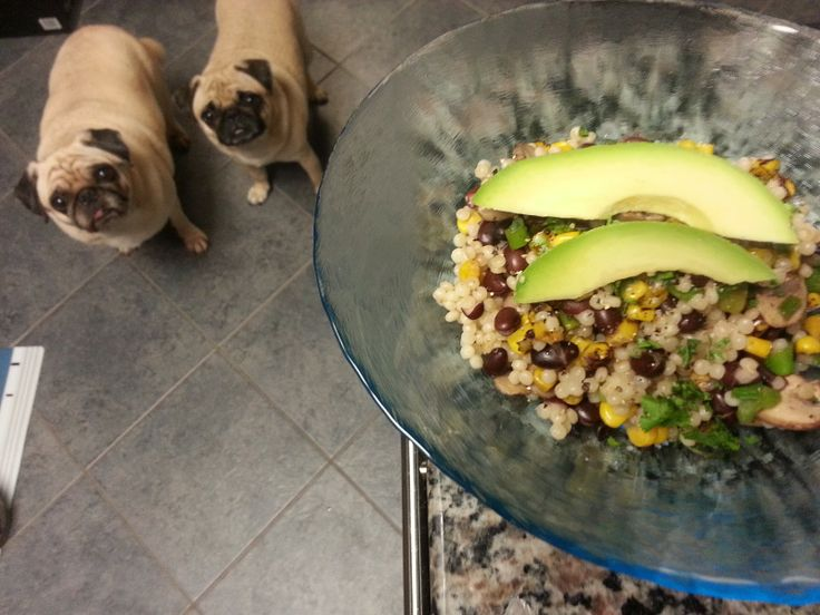 ... Salad with Mushrooms, Corn, Black Beans, Scallions and Avocado