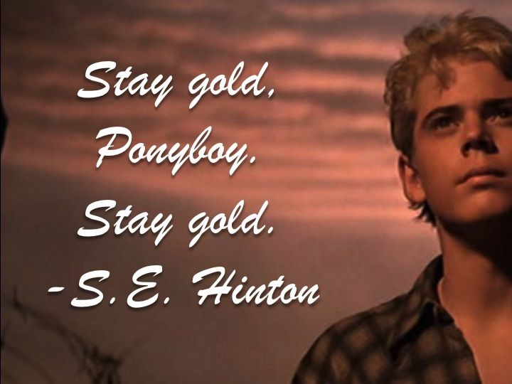 stay gold ponyboy stay gold movie quotes pinterest