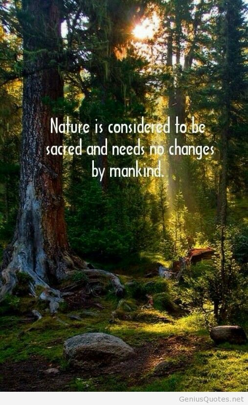 Awesome nature quote with wallpaper Quotes Pinterest