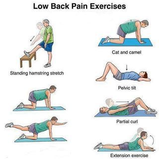 low back pain exercises | good ideas to remember | Pinterest