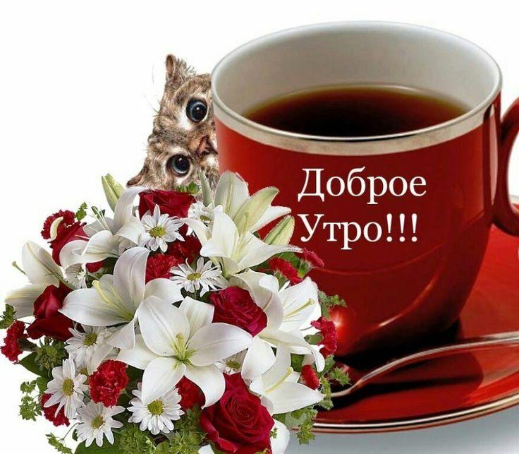 Поздравление С Добрым Утром Сиф Бесплатно Скачать