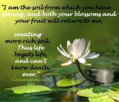 pin by mary paxton on inspiration scriptures quotes and