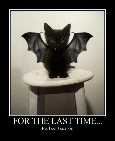 halloween kawaii cat. Black Bedroom Furniture Sets. Home Design Ideas