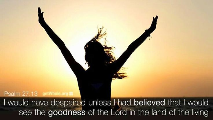 ... see the goodness of the Lord in the land of the living. ~ Psalm 27:13