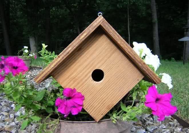 Diy bird house ideasssssssssssss pinterest for Diy bird house