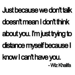 Another reason I like Wiz - this is more than true.