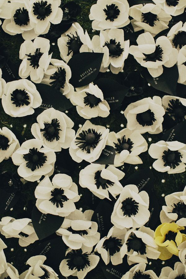 wall of crepe paper flowers // photo by Samm Blake