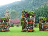 Fantastic! Giant flower owls in Nantou, Taiwan