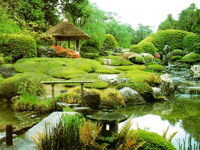 beautiful hawaiian zen garden - photo #21