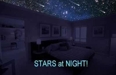 Starscape ceiling murals dream home pinterest for Constellation ceiling mural