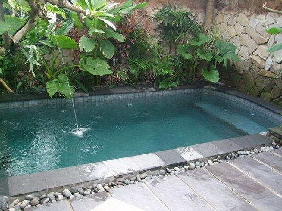 Plunge pool garden and outdoors pinterest for Plunge pool design