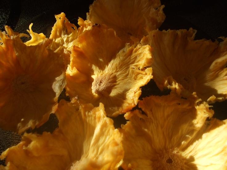 Dried pineapple flowers | Pretty, yummy food | Pinterest
