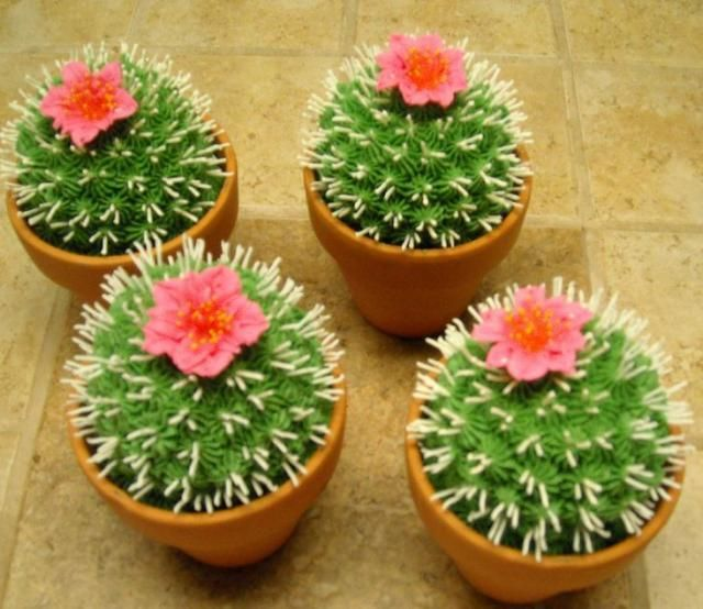 @KatieSheaDesign ♥ Cactus #cupcakes