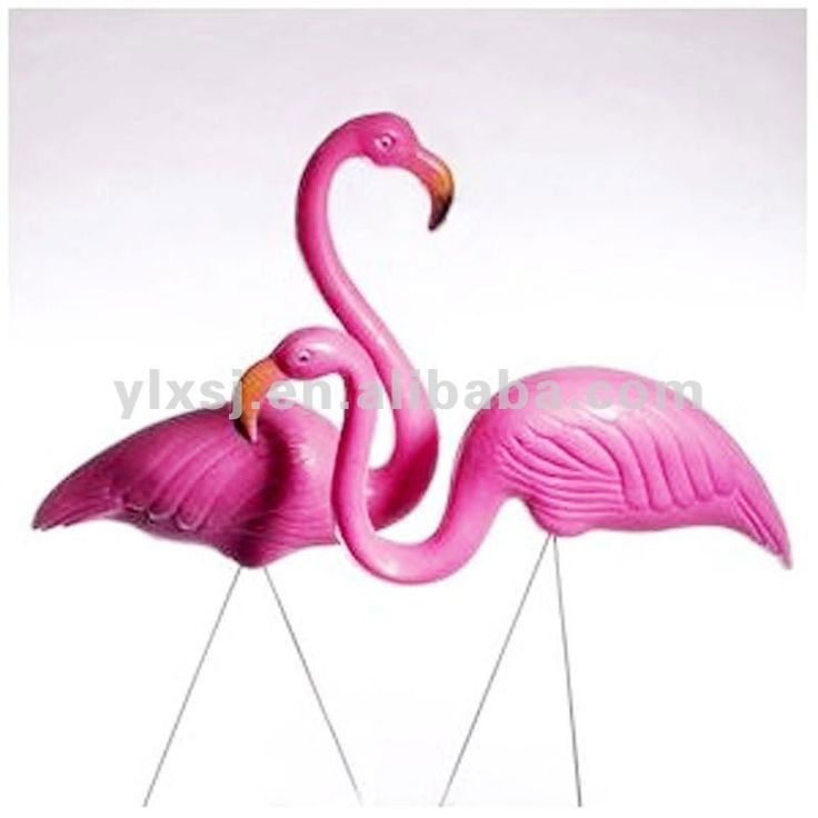 pink flamingo essay ap english