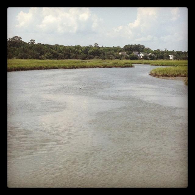 Huntington Beach State Park Marsh Walk Places I Ve Been Pinterest