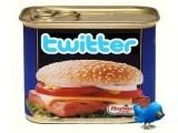 Stop Twitter Spam  (www.socialmedia-site.co.uk)