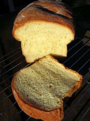 Dilly Ricotta Bread | B R E A D | | Pinterest