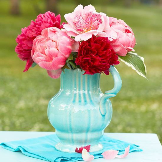 Pink & Red Peonies Dahlias beautiful flowers pitcher peony still life dahila