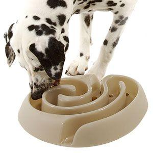 Maze Dog Food Bowl - Slows Rapid Eating