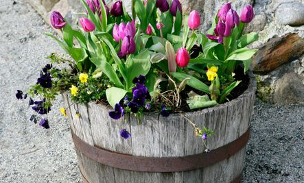 cute diy flower pot ideas garden ideas pinterest
