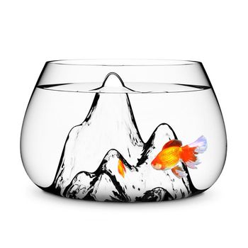 fishscape bowl.
