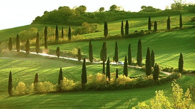 Rick Steves Tours Italy Reviews
