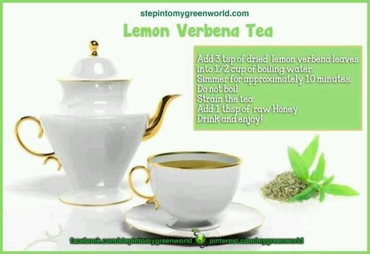 Lemon Verbena Tea | Health & Nutrition | Pinterest