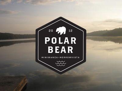 polar bear plunge / alexander michalko