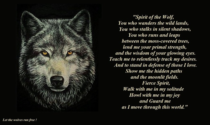 Lone wolf quotes - photo#4