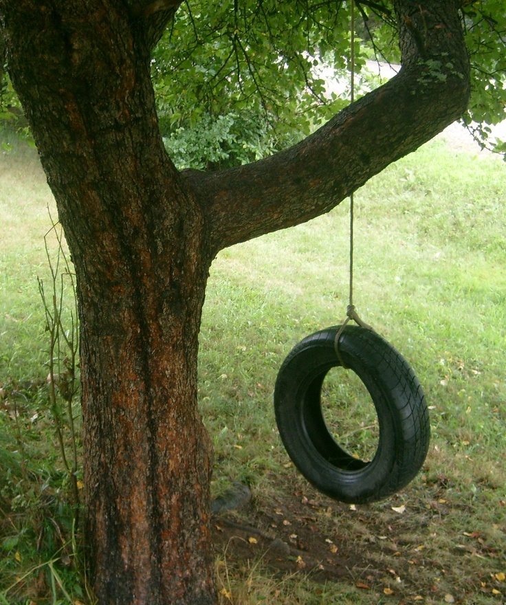 The Old Tire Swing!