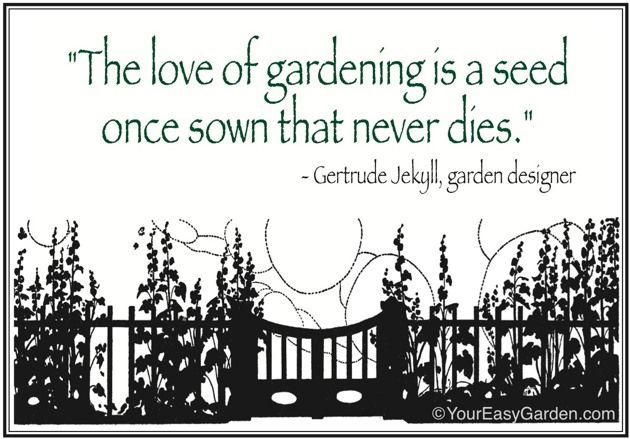 Quotes About Love Quote Garden : Favorite Gardening Quotes Your Easy Garden