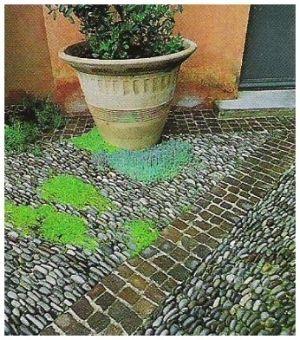décoration jardin maison astuces et accessoires pour une déco à ...