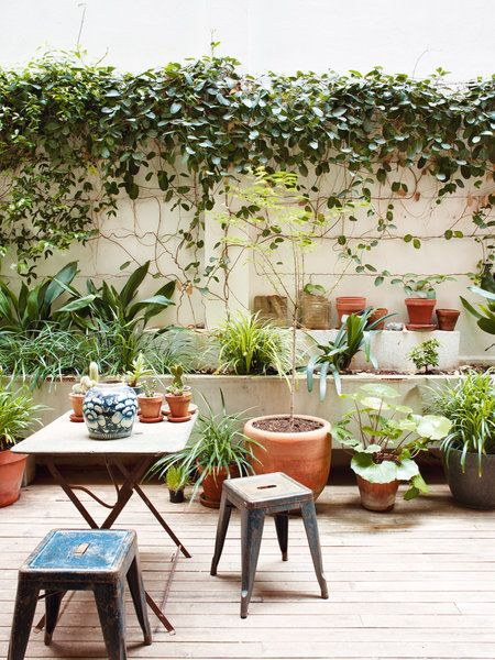 barcelona apartment patio gardens plants outdoors