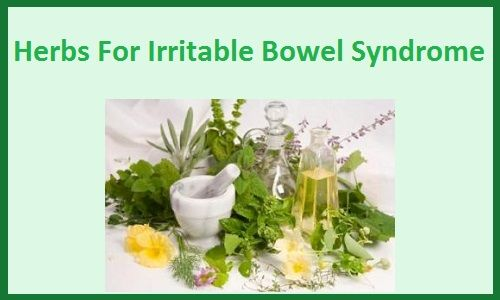 irritable bowel syndrome research papers Dependable irritable bowel syndrome (ibs) causes, symptoms, support and treatment for digestive health sufferers, family and friends since 1987 an ibs.