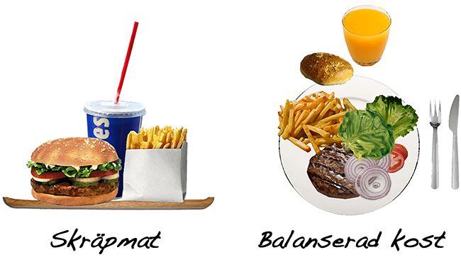 essay on nutrition vs junk food