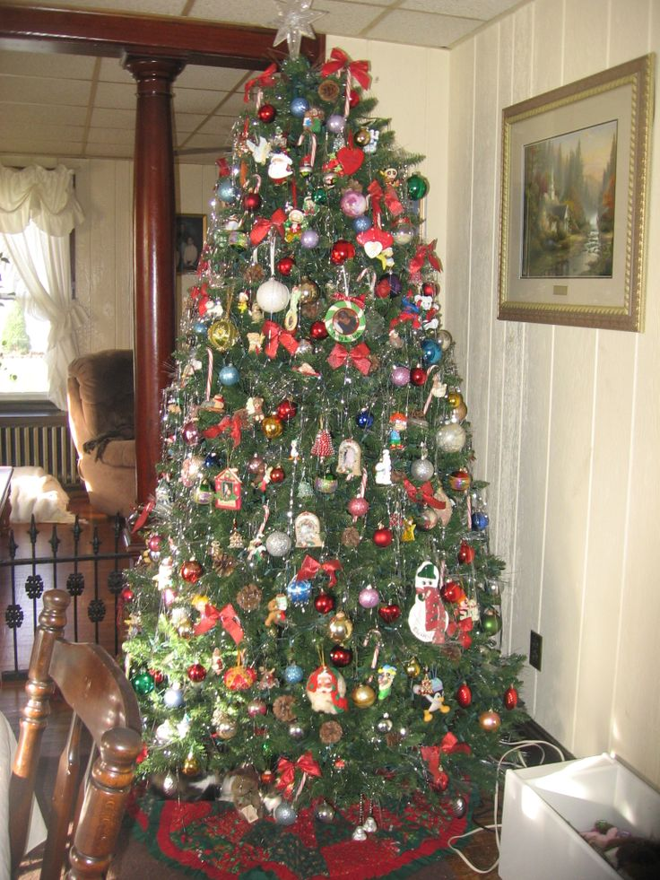 Phillips Christmas Trees