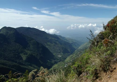 Hortan Place In Sri Lanka Natural Beauty Of Sri Lanka Pinterest