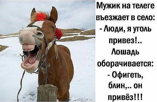 Анекдот Ростова И Лошадь Видео