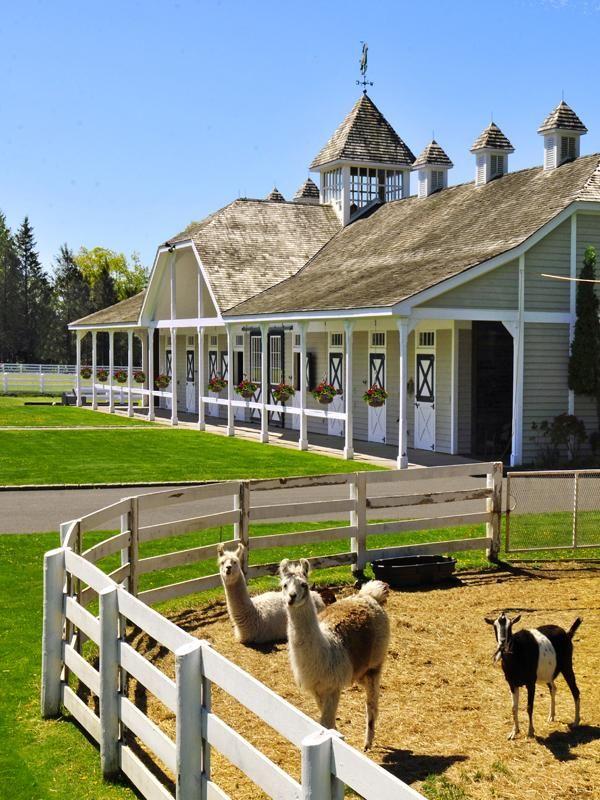 Horse ranch barn farms barns pinterest for Horse farm