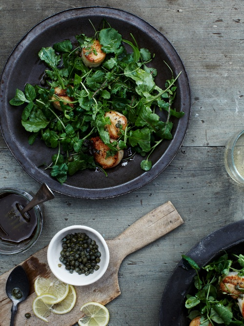 © Christina Holmes  Grilled Scallops over Mixed-Green and Herb Salad Recipe  From Food & Wine's Quick From Scratch Soups & Salad Cookbook